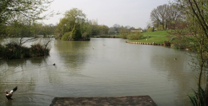 Dove Lake Hawkhurst Fish Farm