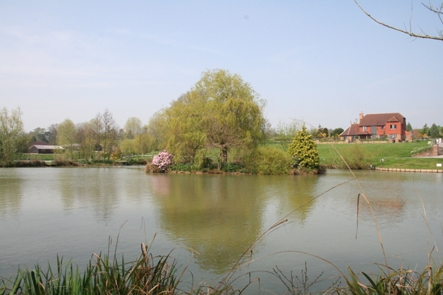 Dove Lake at Hawkhurst Fish Farm