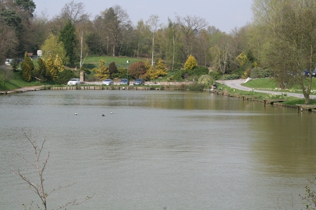 Match Lake Hawkhurst Fish Farm