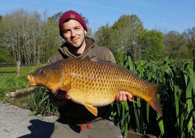 37lb Common - Main Lake