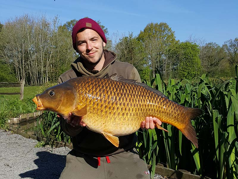 37lb Common - Main - Dan Barden
