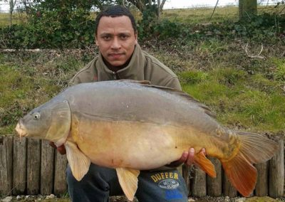 37lb Mirror - Specimen Lake
