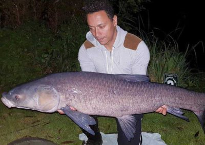 42lb Blue Carp - Specimen Lake