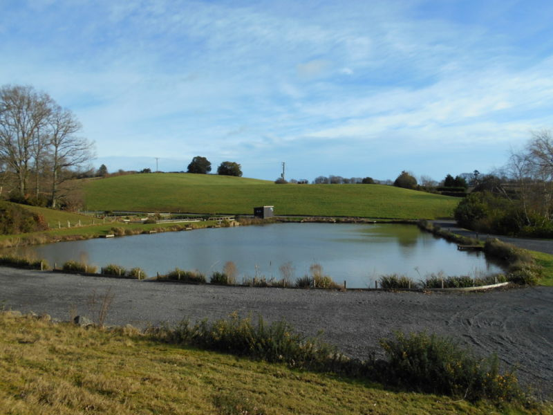 Quarry lake hawkhurst fish farm for Quarry lakes fishing