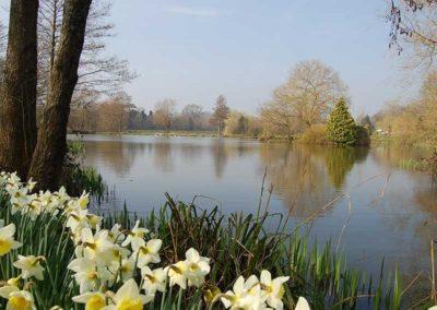 Dove Lake in Spring Time