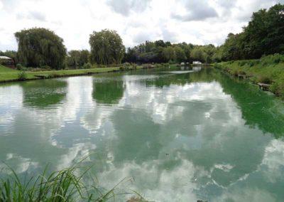 Match Lake Hawkhurst Fish Farm