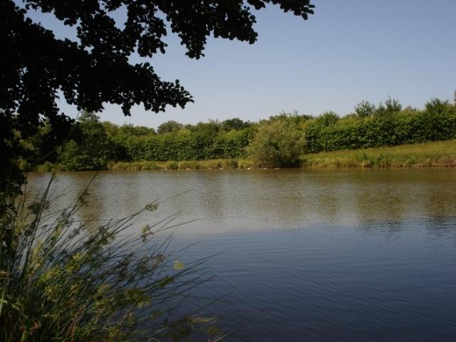 Members only Specimen Lake
