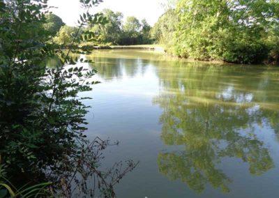 Four Trees Lake