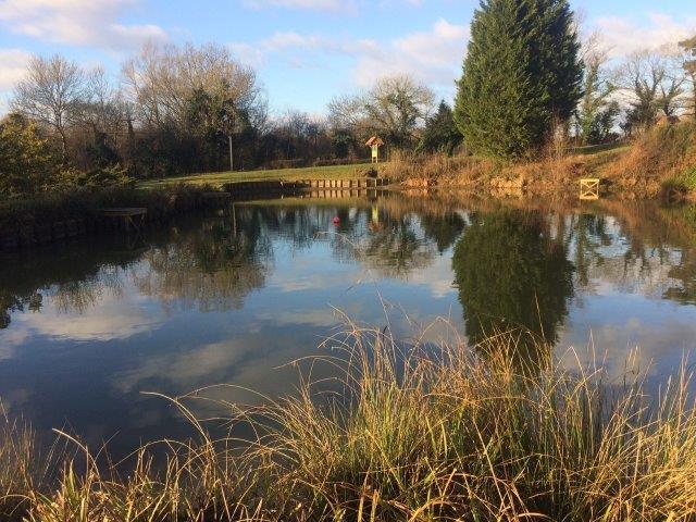 Hawkhurst Fish Farm - Four Trees Lake