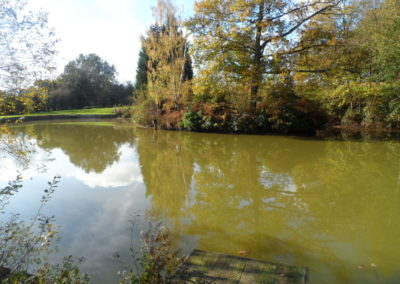 Four Trees Pleasure Lake